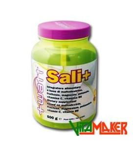 SALI+ ELECTROLYTE 500g Arancia