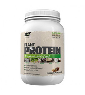Plant Protein 673g