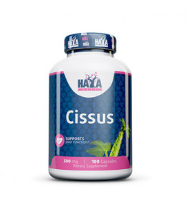 Cissus Extract 500mg 100cps