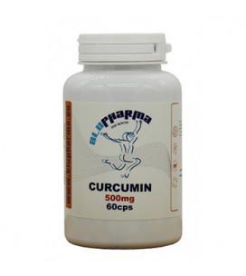 Curcumin 500mg 60cps