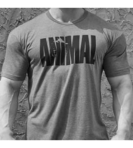 Animal Iconic T-Shirt Grey