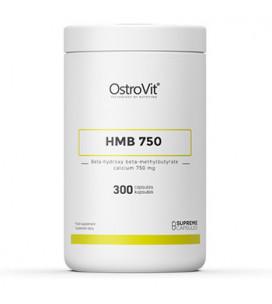 HMB 750 300cps